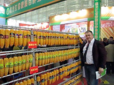 На международной сельскохозяйственной выставке в Харбине