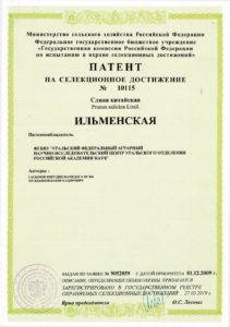 Ильменская. Патент
