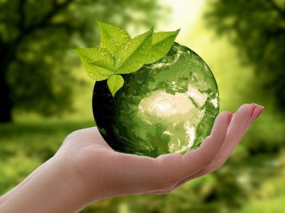 Поздравляем всех гостей нашего сайта с Всемирным днем окружающей среды и Днем эколога в России!